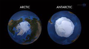 Arctic vs. Antartica images